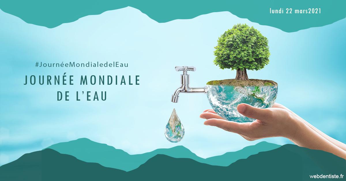 https://dr-tapiero-steeve.chirurgiens-dentistes.fr/Journée de l'eau 1